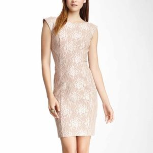 FRENCH CONNECTION Luxury Lace Sheath Dress